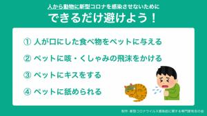 秩父地域における新型コロナ対策について(13)
